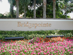 bridge pointe